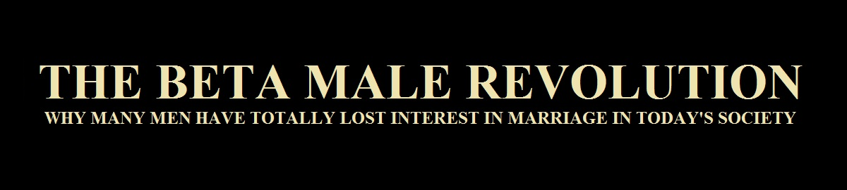 The Beta Male Revolution Page Header